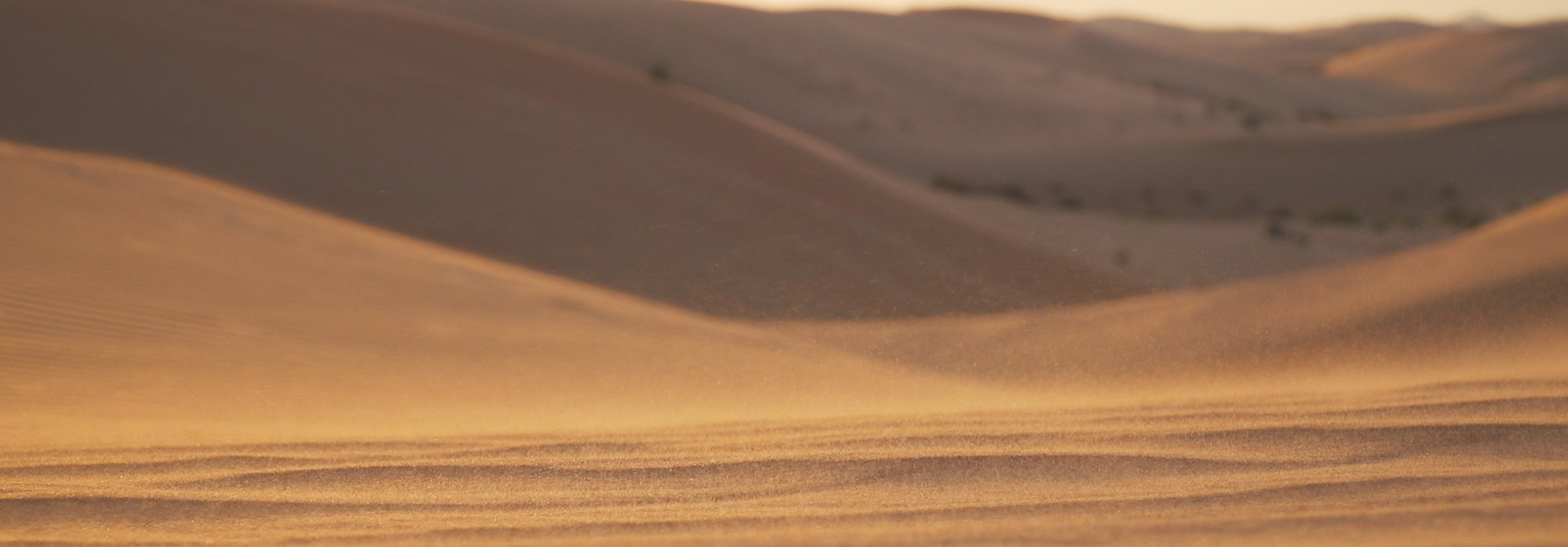 Exploring the United Arab Emirates