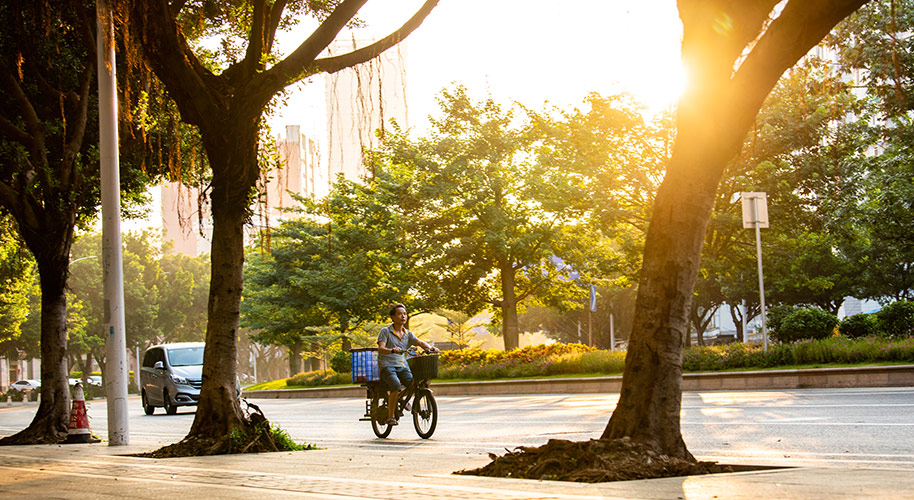 Man on Bicycle Travel Photography